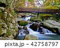 山鶏滝・やまどりたき(福島県・平田村) 42758797