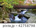 山鶏滝・やまどりたき(福島県・平田村) 42758798