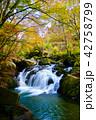 山鶏滝・やまどりたき(福島県・平田村) 42758799