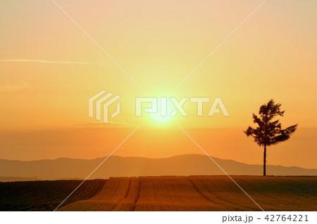 北海道 夕日と北の大地 42764221