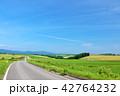 青空 晴れ 北海道の写真 42764232