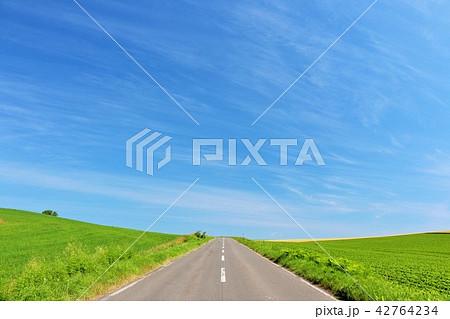 北海道 青空の大地と一本道 42764234