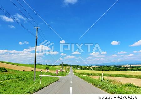 北海道 夏の青空と一本道 42764238