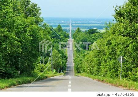 北海道 天に続く道 42764259