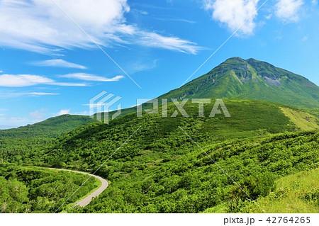 北海道 夏の青空と知床・羅臼岳 42764265