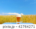 晴れ ビール 生ビールの写真 42764271