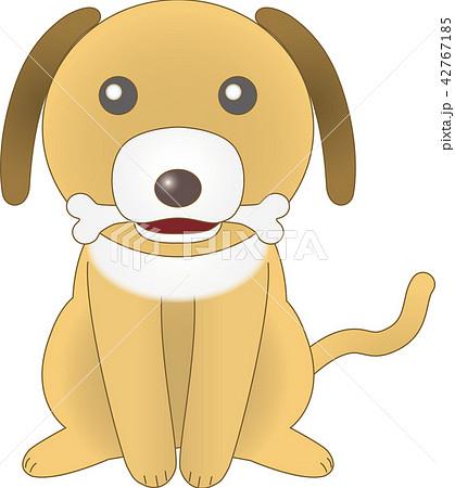 骨をくわえた犬(シーズー) ベクター 42767185