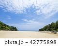 石垣島 クリスタルビーチ 42775898