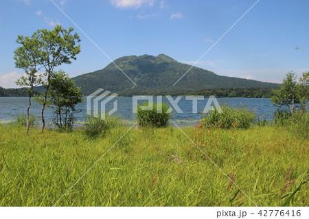尾瀬沼と燧ヶ岳 42776416