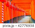 京都 伏見稲荷大社 千本鳥居 42776938