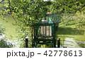 左右対称 シンメトリー 森の幾何学的な自然 42778613