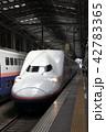 新潟駅に停車中の上越新幹線Maxとき号 42783365