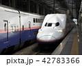 新潟駅に停車中の上越新幹線Maxとき号 42783366