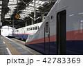 新潟駅に停車中の上越新幹線Maxとき号 42783369