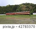 いすみ鉄道の急行列車(キハ52+キハ28) 42783370