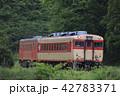 いすみ鉄道の急行列車(キハ52+キハ28) 42783371