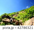 夏山登山 42786321