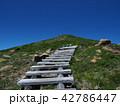 夏山登山 42786447