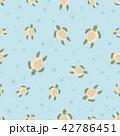 かめ カメ 亀のイラスト 42786451