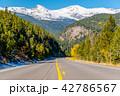 道路 景色 森林の写真 42786567