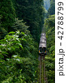 久留里線 森の谷 景色の写真 42788799