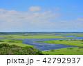 霧多布湿原 琵琶瀬川 展望の写真 42792937