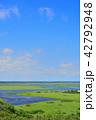 霧多布湿原 琵琶瀬川 展望の写真 42792948