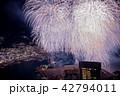 (静岡県)熱海100万ドルの夜景と海上花火 フィナーレ 42794011
