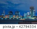 東京の夜景 42794334