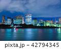 東京の夜景 42794345