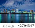 東京の夜景 42794347