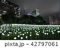Light Rose Garden In Hong Kong City at night 42797061