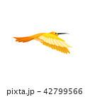 鳥 ハチドリ ハミングバードのイラスト 42799566