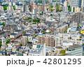 東京の街並み 42801295