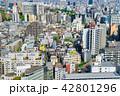 東京の街並み 42801296