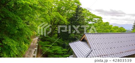 目の神様で有名な、青倉神社(兵庫県朝来市山内権現谷)※作品コメント欄に撮影位置あり 42803539