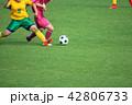 女子サッカー試合風景 42806733