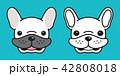 わんこ 犬 フレブルのイラスト 42808018