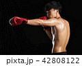 キックボクシング 42808122