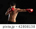 ボクシング ボクサー 男性の写真 42808138