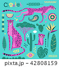 Wild exotic cats, tropical plants and ethnic patterns set. Cheetahs and their cub. Vector 42808159