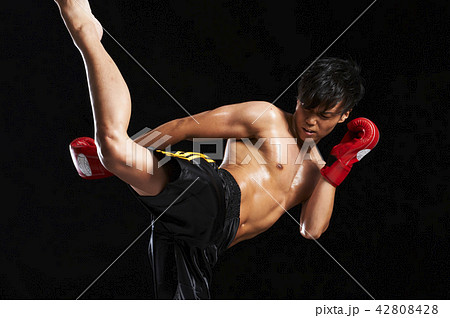 キックボクシング 42808428