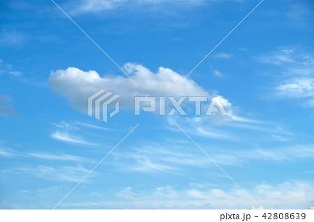 空 青空 雲 42808639