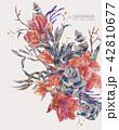 アマリリス ヒッペアストルム属 水彩画のイラスト 42810677