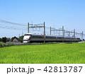 東武鉄道 特急電車 田んぼの写真 42813787