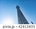 スカイツリー 東京スカイツリー タワーの写真 42813835