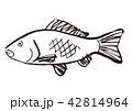 鯉 水彩画 42814964