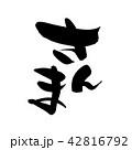 筆文字 文字 さんまのイラスト 42816792