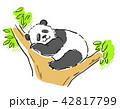 動物 パンダ 42817799