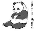動物 パンダ 42817800